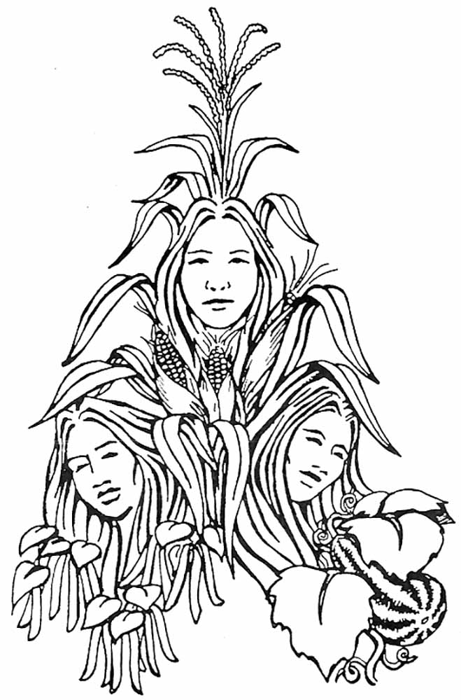 Three Sisters Planting System Indian Time